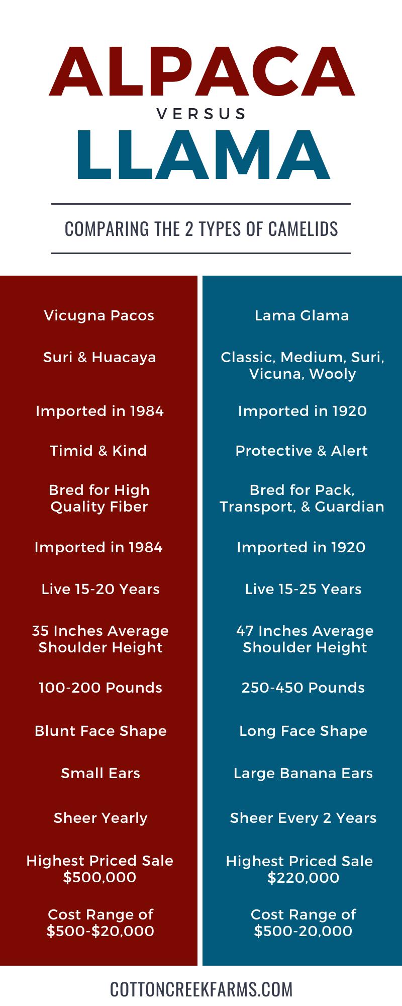 Alpaca vs Llama Infographic