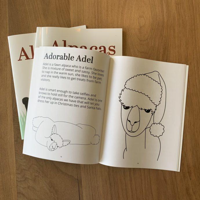 Coloring Book Inside Page - Alpaca Adel