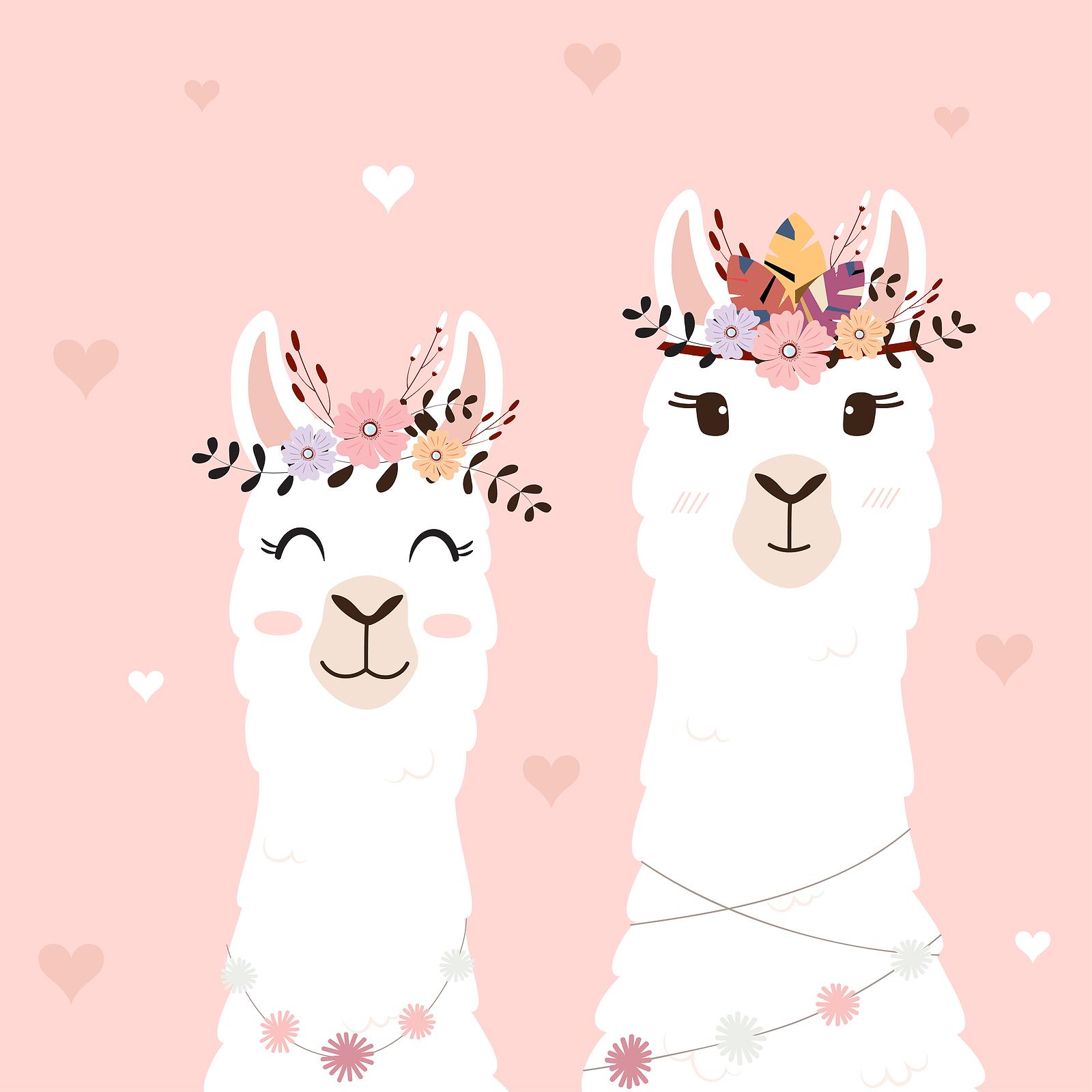 Cartoon Drawing of Two Alpacas Dressed for Wedding