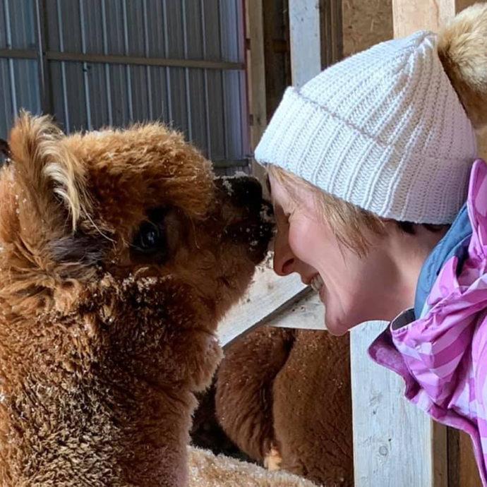 Captain-America-Alpaca-Kisses