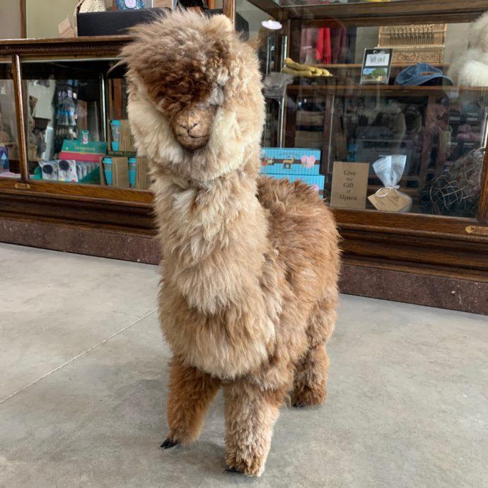 "28"" Plush Alpaca in Mixed Brown Fleece"