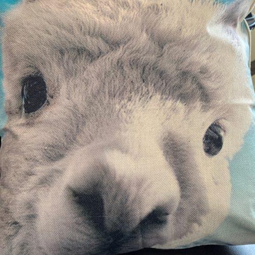 Alpaca Face Pillows