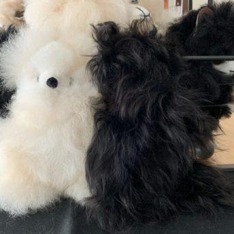 5.5 Plush Teddy Bear