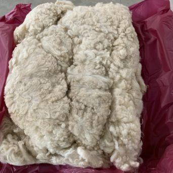 Perfect Centuria Alpaca Fiber Blanket